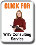 WHS Consulting Service